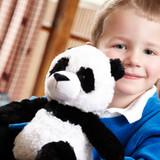 Warmies Cozy Plush Panda Fully Microwavable Toy