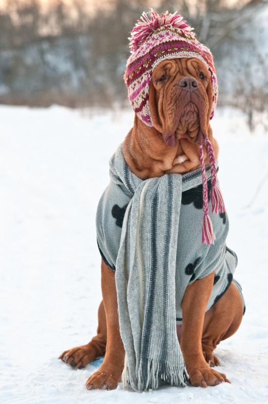 The Heat Treats Top 10 Unconventional Winter Hacks