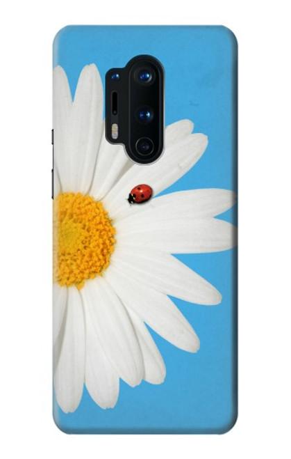 S3043 Coccinelle Daisy millésimé Etui Coque Housse pour OnePlus 8 Pro