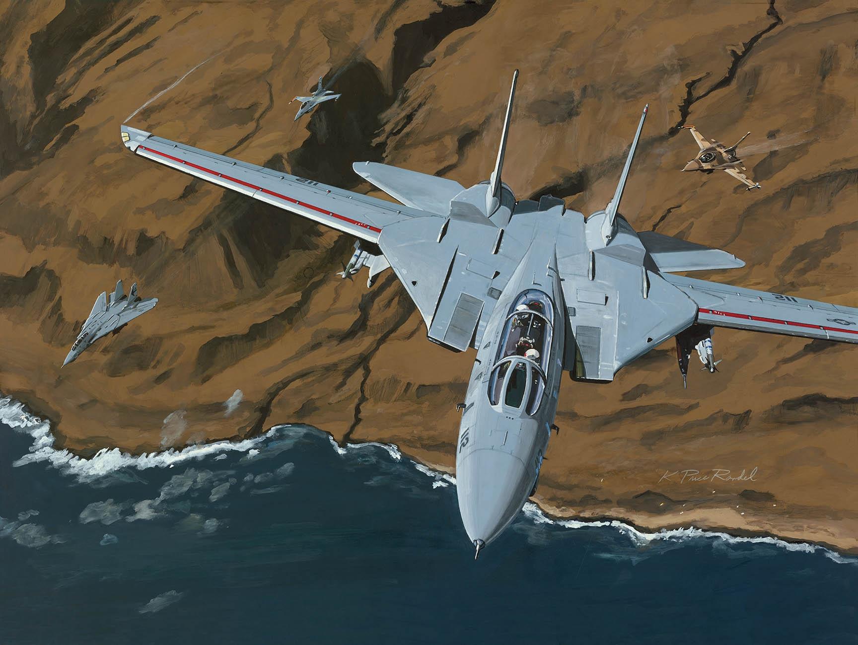 F-14 Tomcat Fine Art Prints