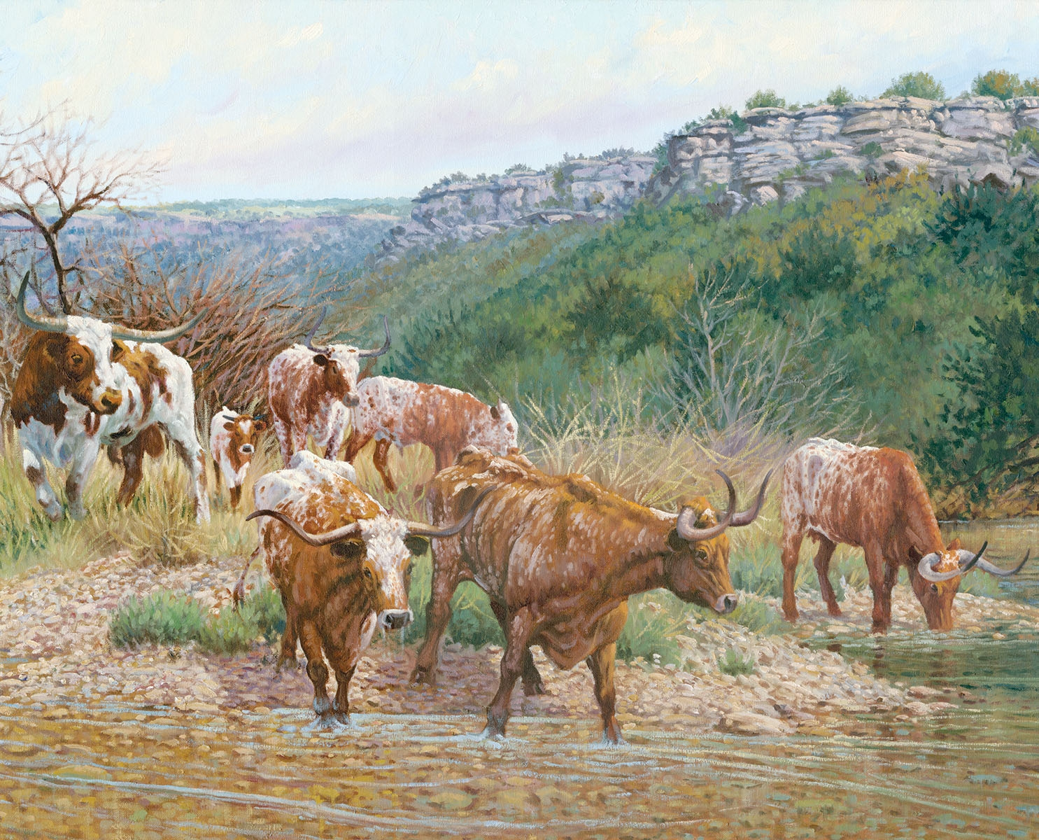 Longhorn Fine Art Prints