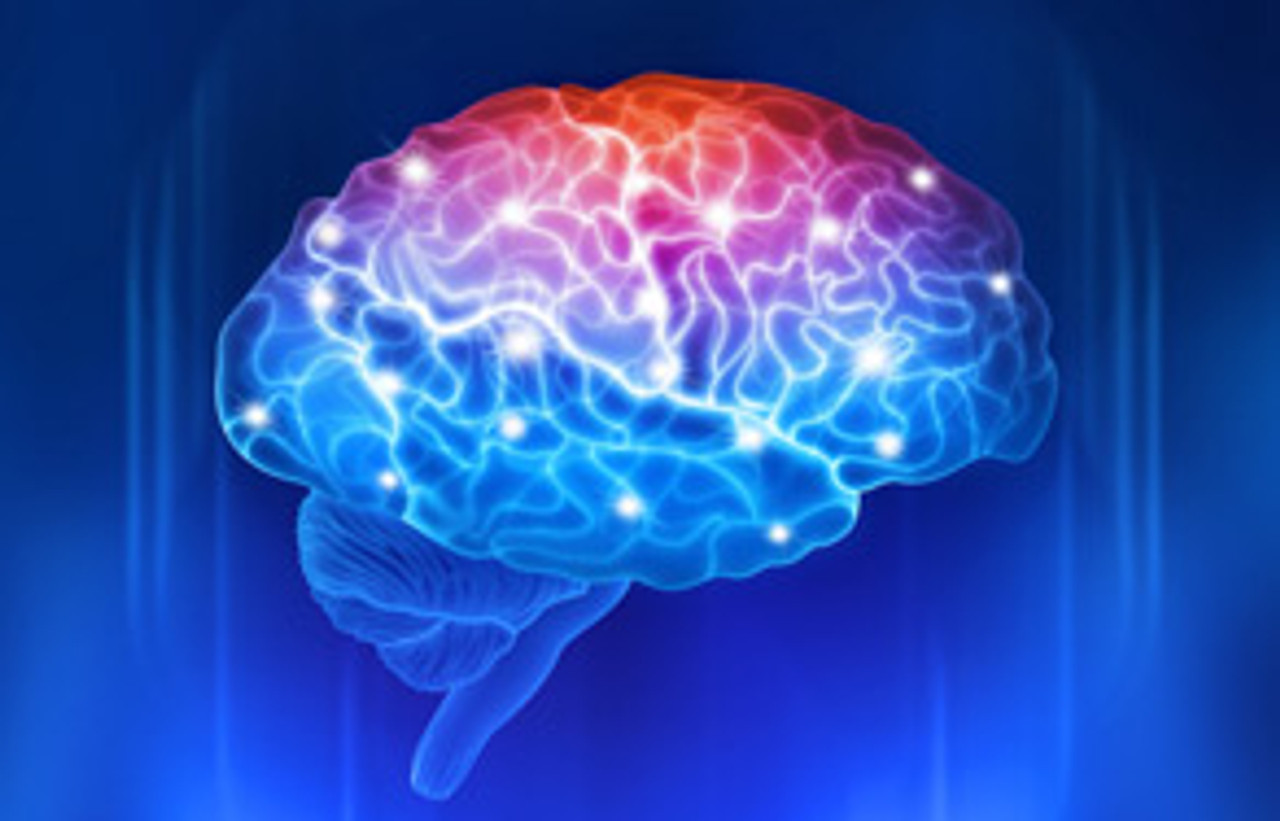 The True Age of Your Brain