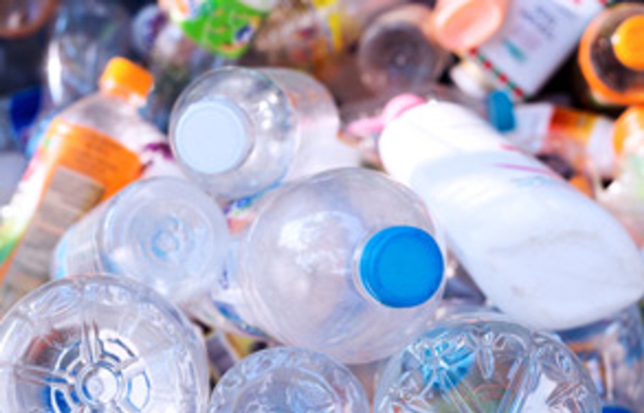 Plastics May Damage Brain Development