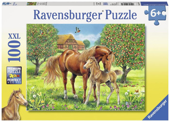 RAVENSBURGER PUZZLES 100 PIECES (STYLES VARY)