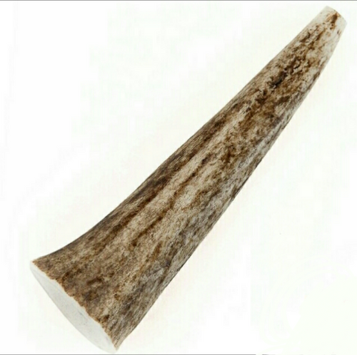 Medium Elk Antler Chew