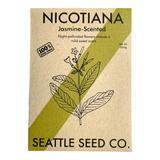 Nicotiana - Jasmine Scented