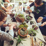 Try one of our Terrarium Workshops!