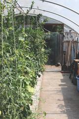 Urban Farm Tour 2017: Exploring the Unique Farms in Seattle's Concrete Jungle