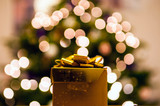 Seattle Seed Co.'s Ultimate Holiday Gift Guide