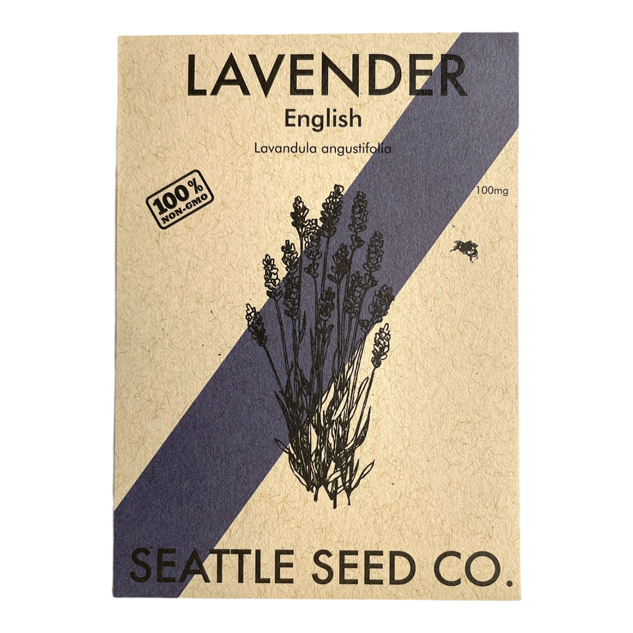 Lavender - English