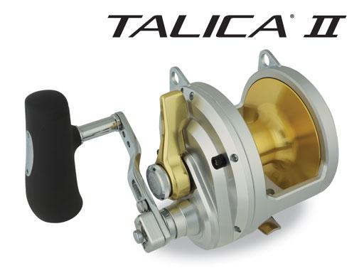 talica-ii.image.-familyimage-single-image.dash.jpg