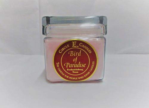 Circle E Candle, Bird of Paradise 28 oz.