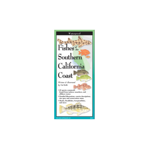 Fishes of the Southern California Coast