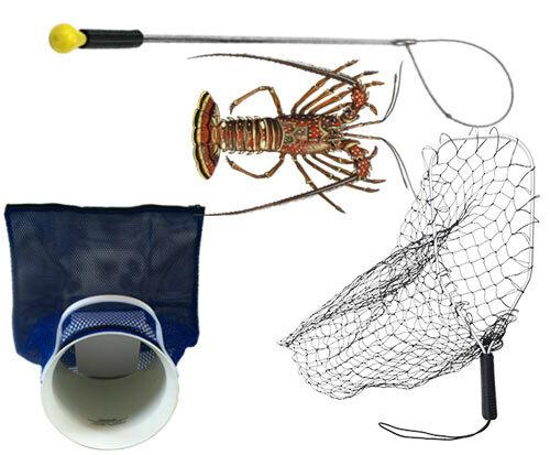 Lobster Gear / Abalone Gear