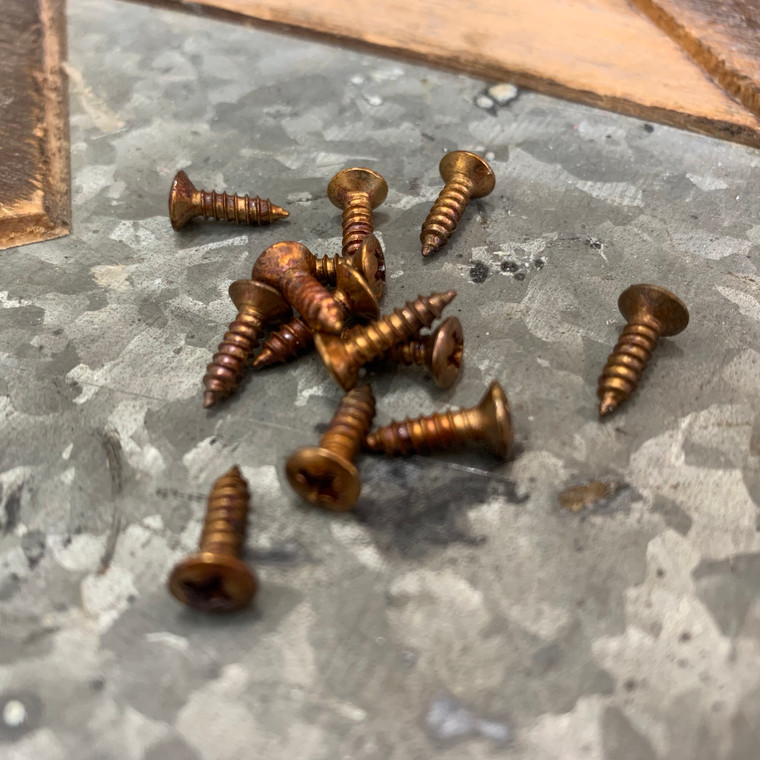 Real Life Relics Fender® Replacement Aged Gold Pickguard Screws (Pack Of 13)