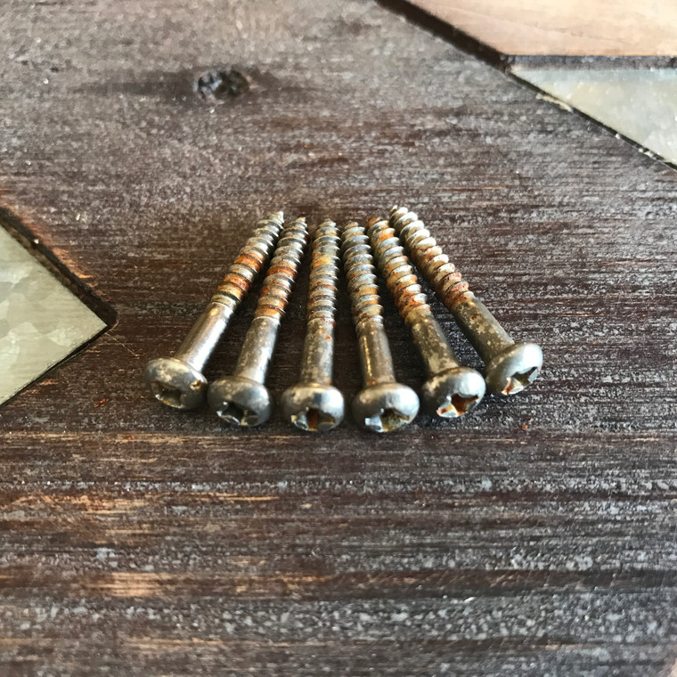 Real Life Relics Fender® Replacement Aged Nickel Stratocaster® Tremolo/Bridge Screws (Set of 6)