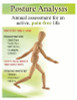 Posture Screening flyer ready to customize.