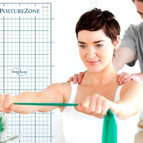 How to choose a posture grid
