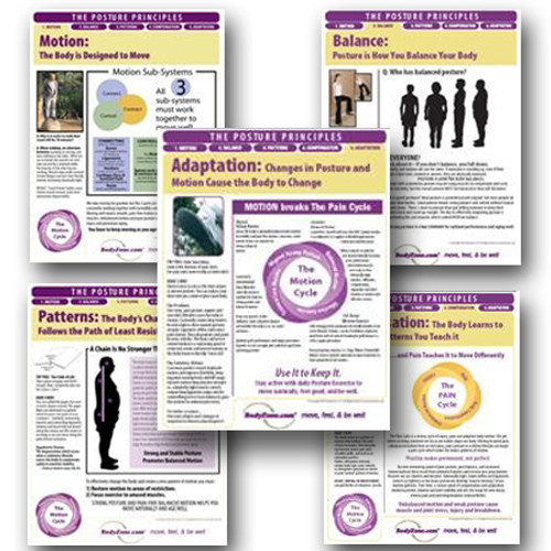 Posture Principles Posters (set of 5)