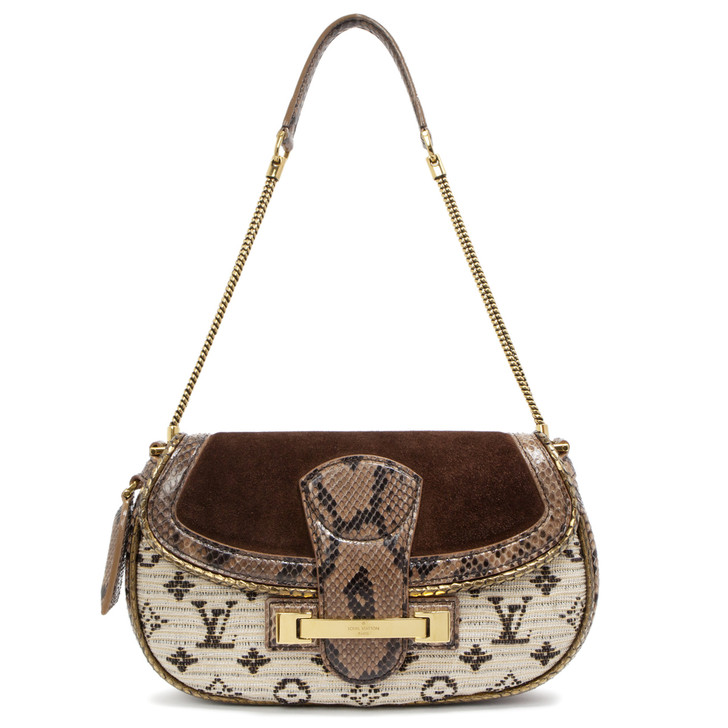 Louis Vuitton Python Monogram Empire Levant Bag