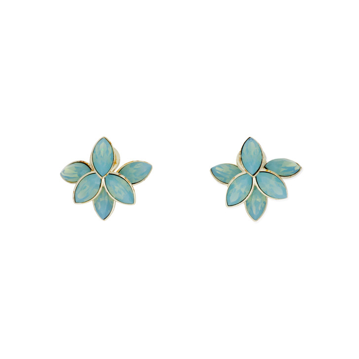 Christian Dior Crystal Tribal Flower Earrings