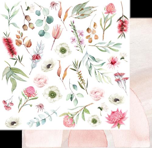 outback divine - native flora