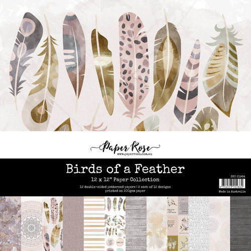 12x12 paper pack - birds of a feather