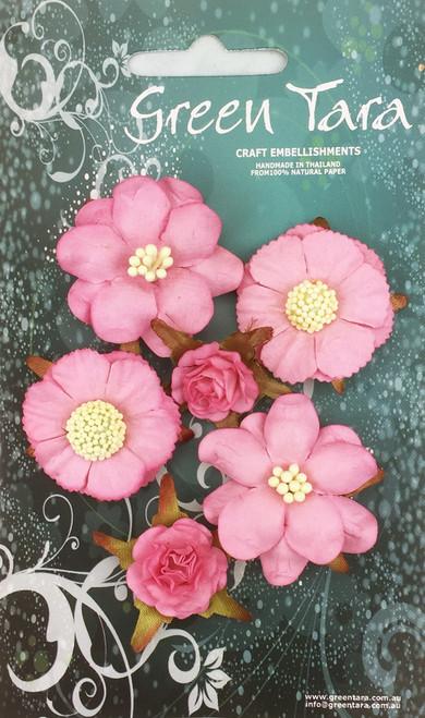 vintage flower 6 pack