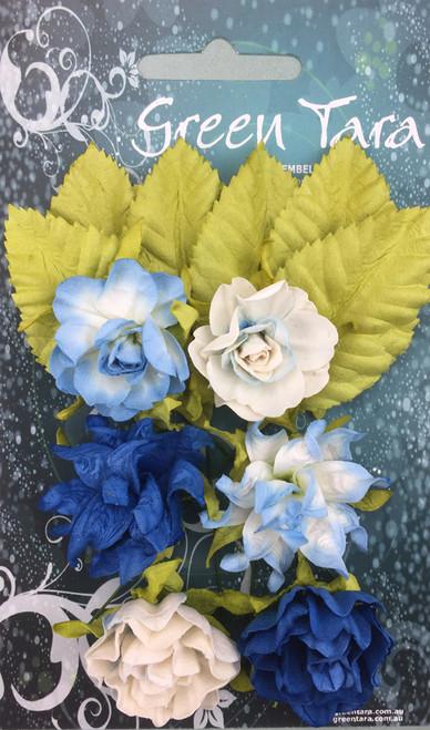 tea roses bright blue 6pk