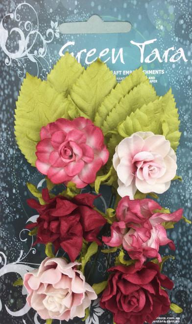 tea roses soft red 6pk