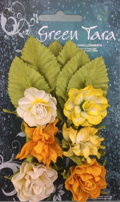 tea roses yellow 6pk
