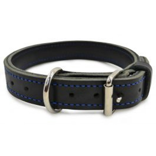 Ray Allen Blue Line Agitation Collar