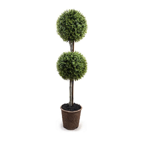 "11"" DOUBLE BALL BOXWOOD TOPIARY IN POT"
