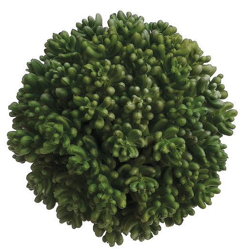 "4.5"" Succulent Orb  Green"