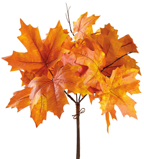 "18""MAPLE LEAF BUNDLE"