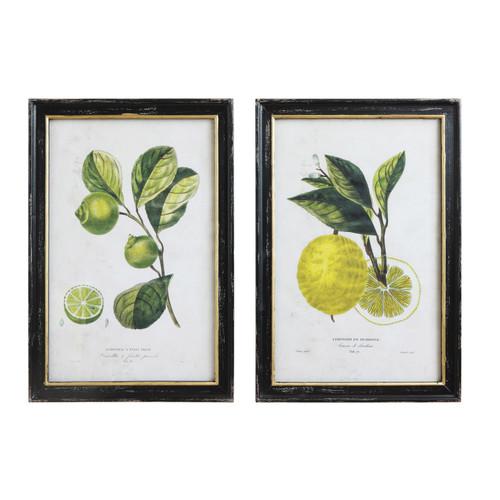 Wood Framed Wall Decor, Vintage Reproduction Lemon/Lime