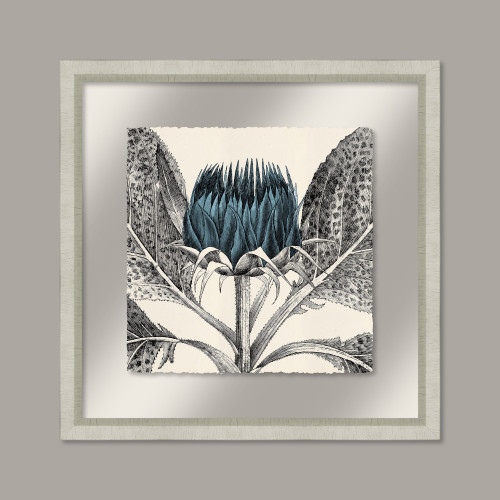 Arctium in Adrift and Silver II