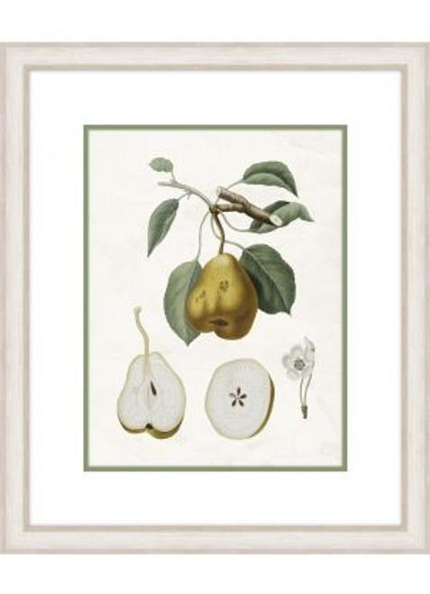 Pear Branch I