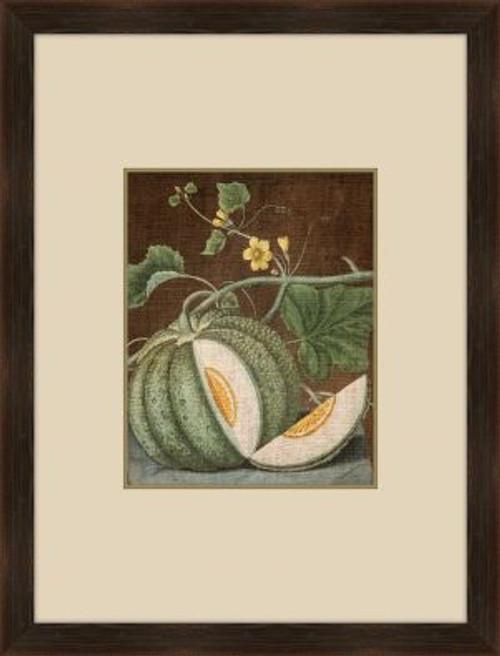 Brookshaw Melon I