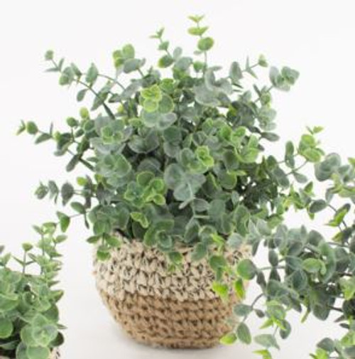 Artificial Eucalyptus Plant in Woven Pot - Large