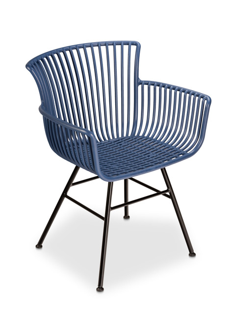 Eileen Arm Chair, Navy with Neutral Colored Cushion- Set of 2