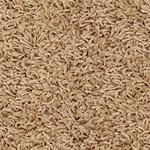 Frieze Carpet Nature's Harmony