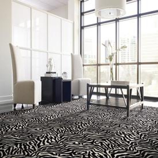 Call Of The Wild Zebra 54505 - Shaw Philadelphia Commercial Carpet room scene