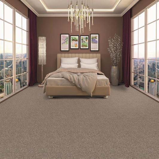 Phenix Riverband II N258 Residential Carpet Room Scene