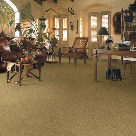 Buy Fabrica Visage Stainmaster Carpet At Georgia Carpet