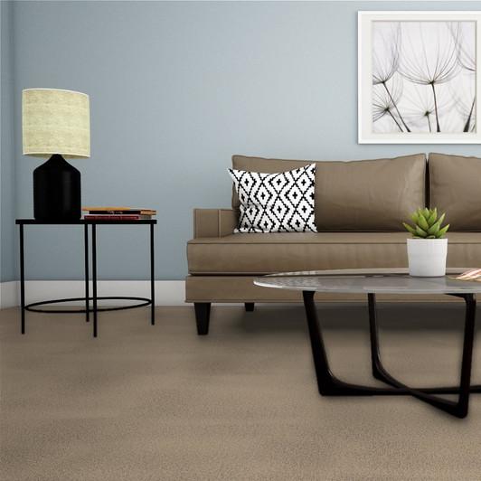 Dreamweaver Montauk 2560 Residential Carpet Room Scene