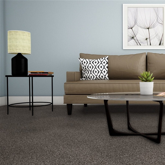 Dreamweaver Reflections I 5348 Residential Carpet Room Scene