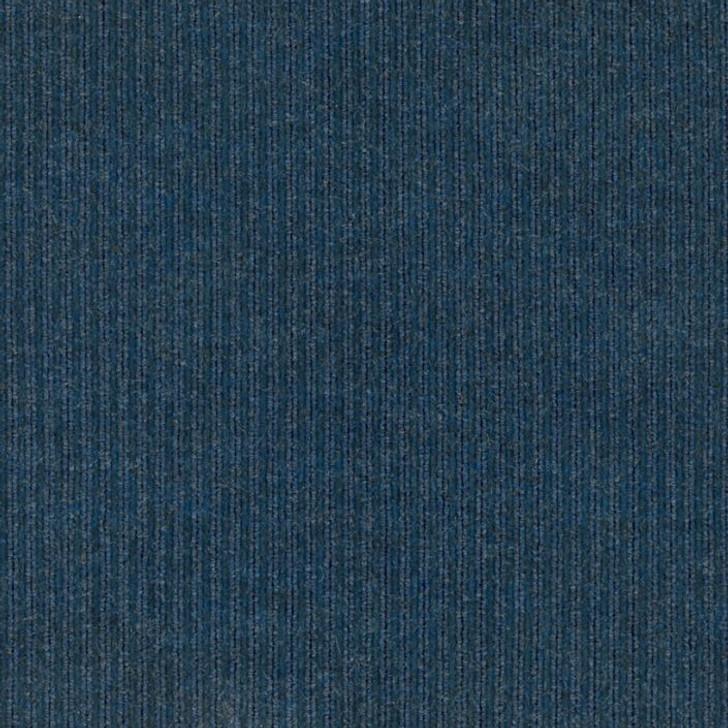 Shaw Philadelphia Beacon II 54692 Indoor/Outdoor Carpet