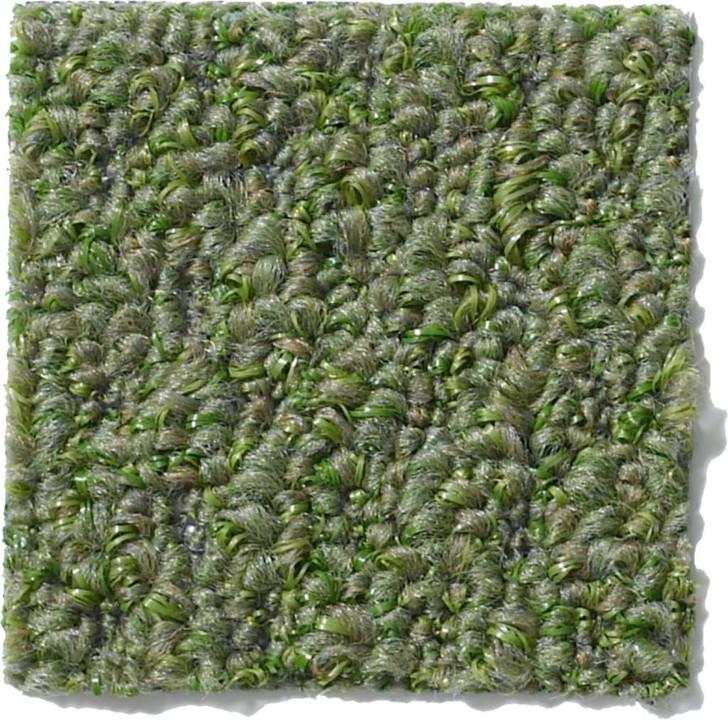 Gardenscape Indoor Outdoor Carpet
