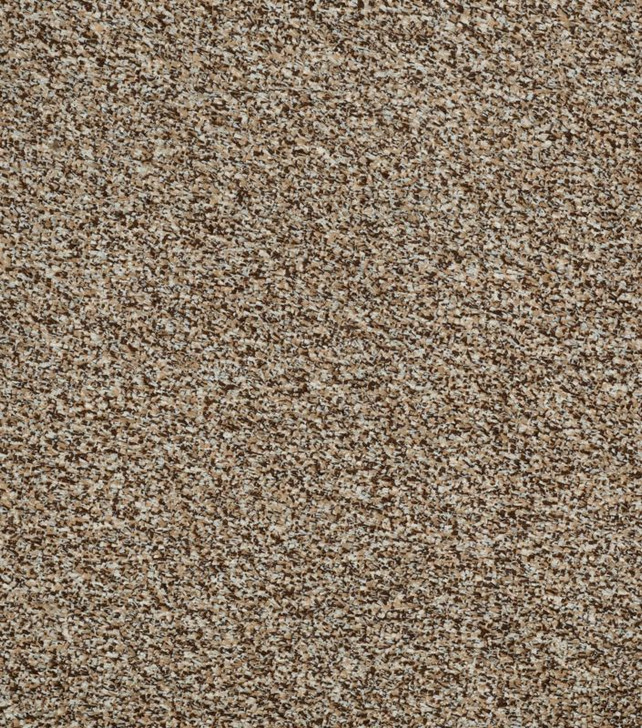 Shaw Philadelphia Cabana Tweed 54631 Indoor/Outdoor Turf Carpet